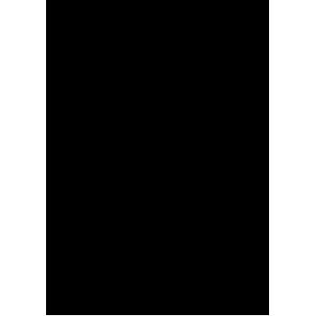 Bodyboard (4)